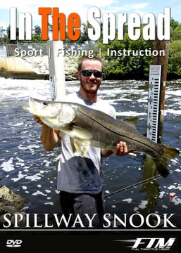 spillway snook fishing in the spread video florida
